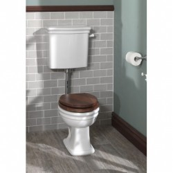 Loxley pan and low level cistern