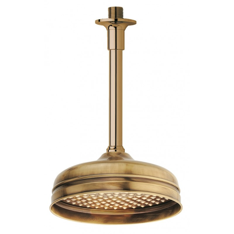 Shower head for ceiling mount