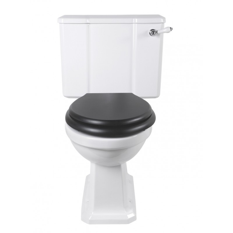 Chelsea toilet with fixed cistern