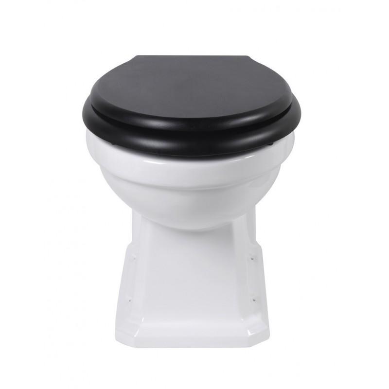 Chelsea toilet to floor