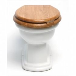 BERGIER toilet to floor to built-in cistern