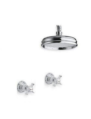 6021-L Water spring fixture ceiling mount shower